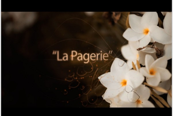 vignette-video-pagerie